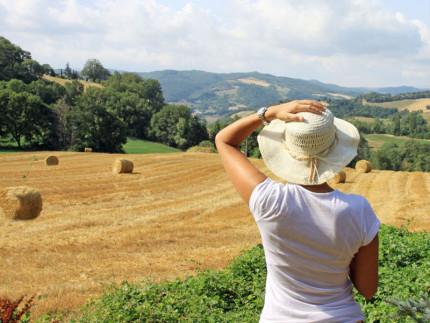 Marche. Land of hats - Copertina del catalogo