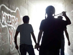 Aggressione, rissa, gang, violenza