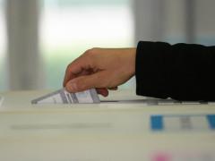 elezioni, voto, scheda elettorale, urne, votazioni