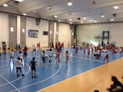 Gioca Volley a Sant'Elpidio a Mare