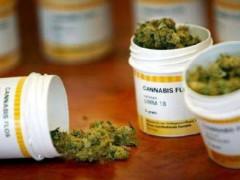 Cannabis per uso terapeutico