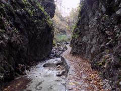 Gola dell'infernaccio: il percorso naturalistico