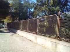 Ripulita la siepe del parco pubblico di Corso Marconi a Fermo