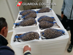 Sequestro della Guardia Costiera