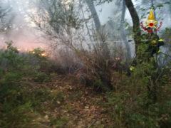 Incendio a Serra San Quirico, a fuoco la vegetazione
